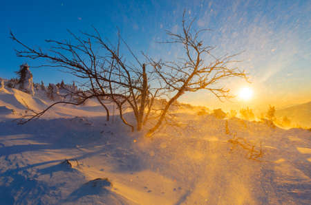 Snowstorm in the mountains during a sunset Stock Photo