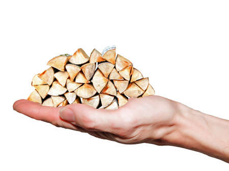 Hand carries firewood stack of beech wood with white background