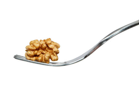 dig up: Shelled walnut on fork with white background.