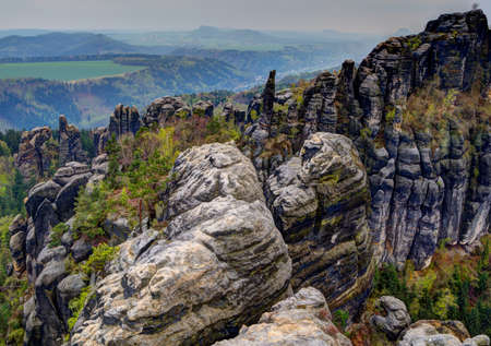 scarring: Elbe Sandstone Mountains in spring