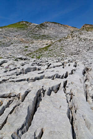 disconsolate: Limestone surface in the high mountains in the Alps