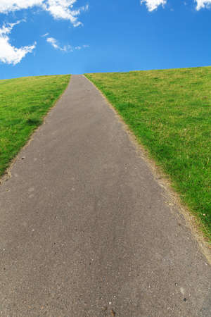 Path leads lined Grass into the distance to the horizon.