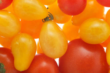 harvests: A couple of ripe tomatoes