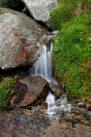 source: Source of a stream in the Alps, in summer after heavy rain.