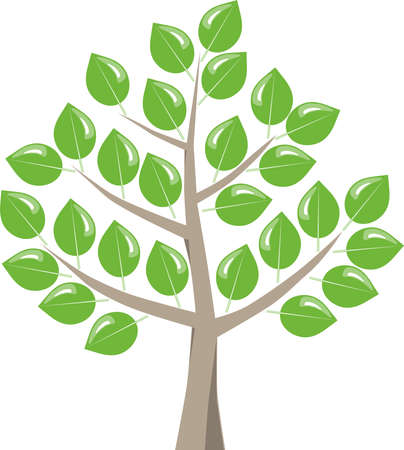 break in: Deciduous tree with green fresh leaves after bud break in the spring. Symbolic graphic on white background.
