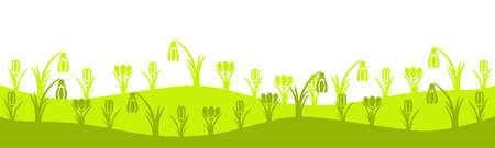 Crocuses on the spring meadow.