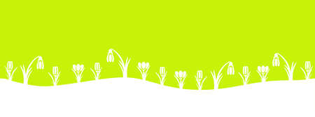 springy: Spring green with snowdrops and crocus flowers. Illustration