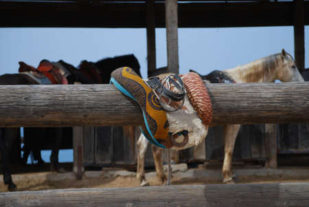 old leather saddle for horse on ranch Stock Photo - 2905299