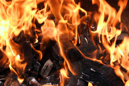 barbecue grill flame, burning wood ash, close up Foto de archivo