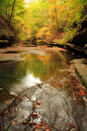 fall forest and the river, sunrise time Stock Photo - 6258091