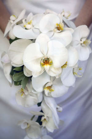 bride id holding Orchid flower bouquet