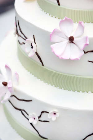 Wedding cake decorated with  apple tree flowers