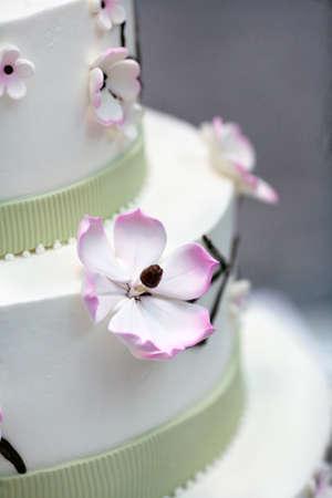 Wedding cake decorated with  apple tree flowers Stock Photo - 6971497