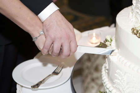wedding cake and bride and groom with the knife photo