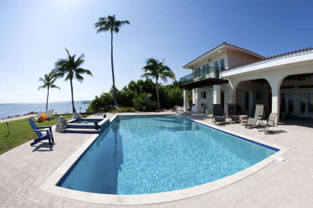 luxury house: Beautiful swimming pool with palm tree and a house in tha Florida