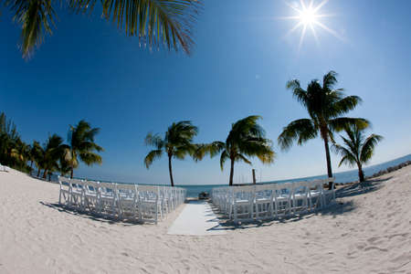 white chairs under a palm tree in the florida keys