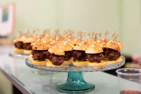 Mini burgers canapes snacks for furshet on the plate
