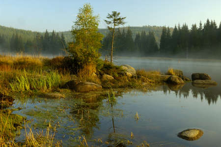 Mountain Lake in Deep European Forest photo