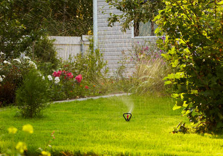 sprinkler: watering the lawn in garden with sprinkler system Stock Photo