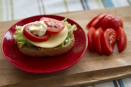 homemade sandwich with cheese and tomato on red plate