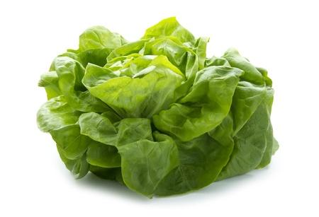 fresh organic lettuce isolated on white background