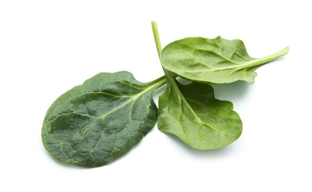 fresh spinach leaves isolated on white background Stock Photo
