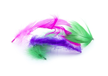 pile of colorful feathers isolated on white background photo