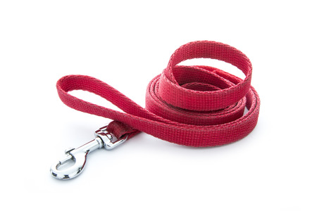 dog leashes: red dog leash isolated on white background Stock Photo