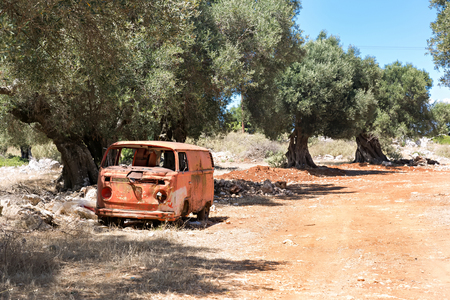 abandoned car: old abandoned rusted car in the olive grove Stock Photo