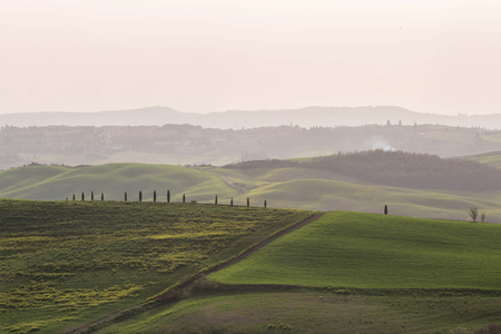 Green hills of Tuscany, scenic view