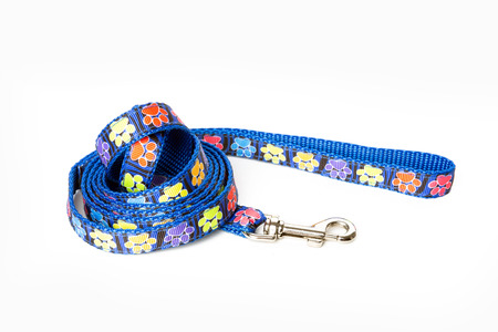 Blue dog leash isolated on white background