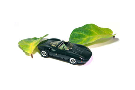 A stunning toy car hidden in nature. Stock Photo