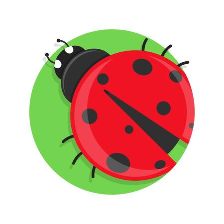 caricatura mosca: ilustración del icono de la mariquita aislado en blanco Vectores