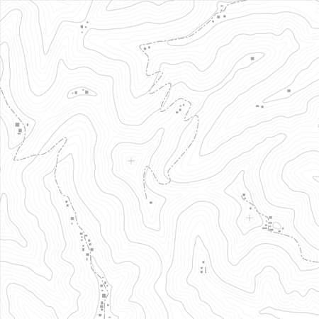 Carte topographique texture d'un pays imaginaire. Les fichiers vectoriels sont entièrement en couches.