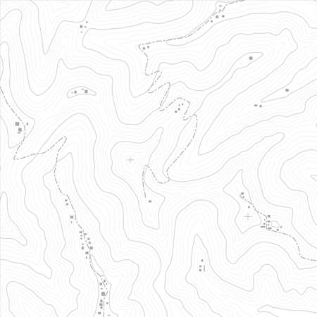 physical geography: Topographic map texture of an imaginary land. Vector files are fully layered.