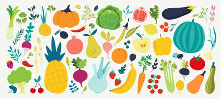 Vector colorful food set for your design. Cute doodle illustration with vegetables and fruits isolated on white background
