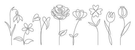 single line art vector flower illustration, outline set of blooming flowers 向量圖像