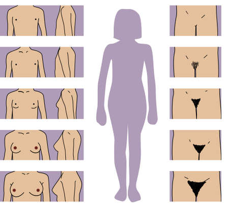 girl growth stages