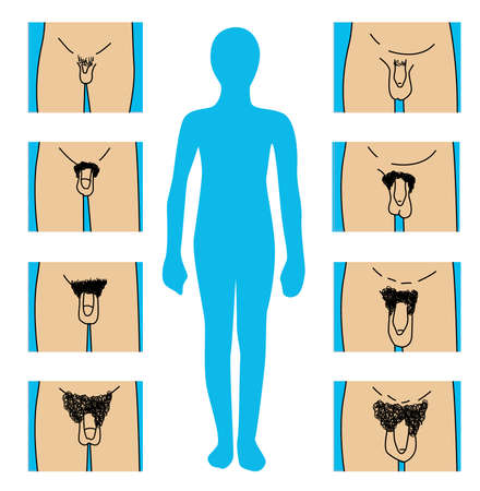 nude male: boy growth stages Illustration