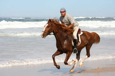 fast horse: Galloping brown horse and rider at the beach