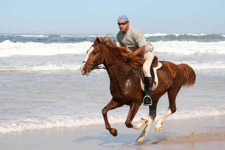 ippica: Galoppante marrone cavallo e cavaliere in spiaggia  Archivio Fotografico