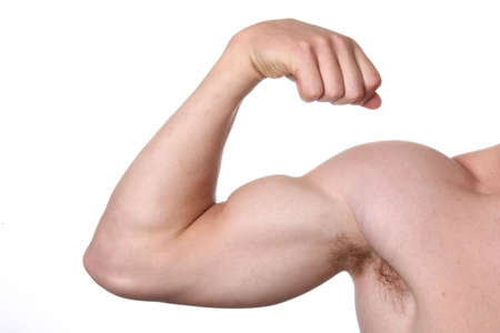 muscled: Muscular arm and shoulder isolated on white background Stock Photo