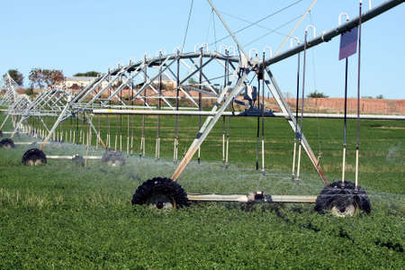 Sprinkler system watering crops on a farmland photo