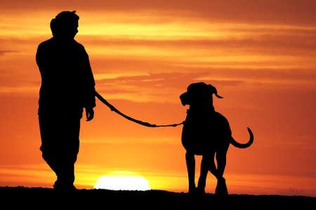 mujer con perro: silueta de una mujer joven paseaba a su perro gran dan�s al amanecer