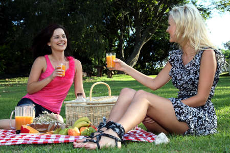 Two beautiful young lady friends enjoying a picnic together on a green lawn Stock Photo - 12705071