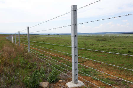 Farm fence with concrete fencing posts and barbed wire strands