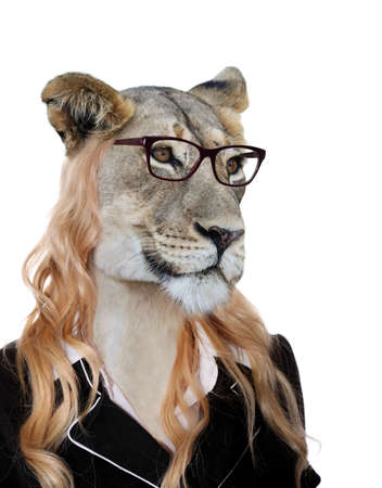 animal woman: Cute lioness wearing spectacles and on womans body concept