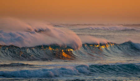 swept: Beautiful wind swept waves with golden reflectiom from the suset