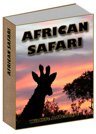 African Safari Book concept with sunset and giraffe on the cover Reklamní fotografie
