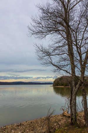 Bare winter tree and a dam on cold winter day Reklamní fotografie
